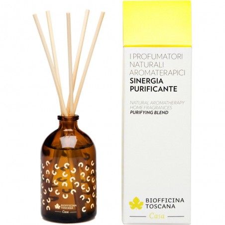 profumatore aromaterapico purificante