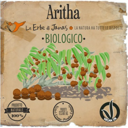 aritha (reetha)